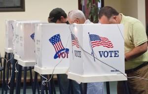 heavy-votingweb